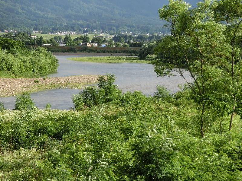 長井市森 さくら堤付近の最上川