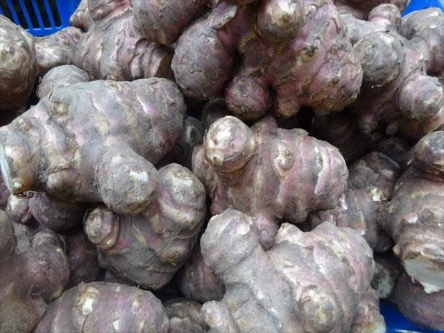 自然食品:赤キクイモ(菊芋) g|自然生活通 …