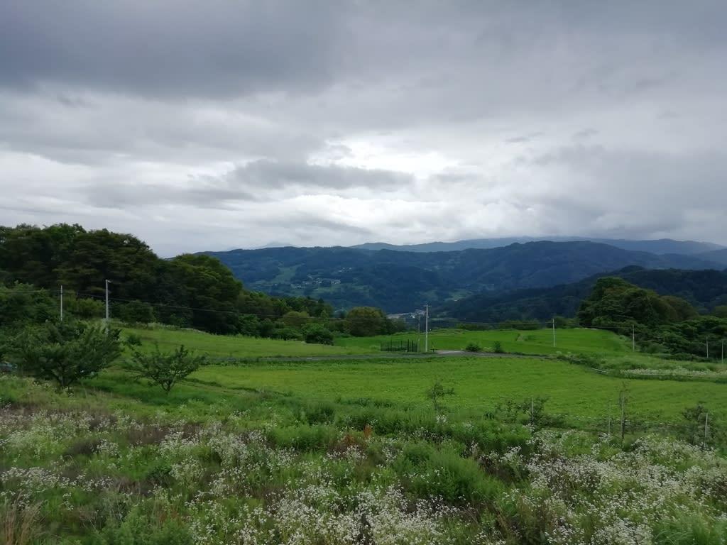 レーダー 長野 雨雲