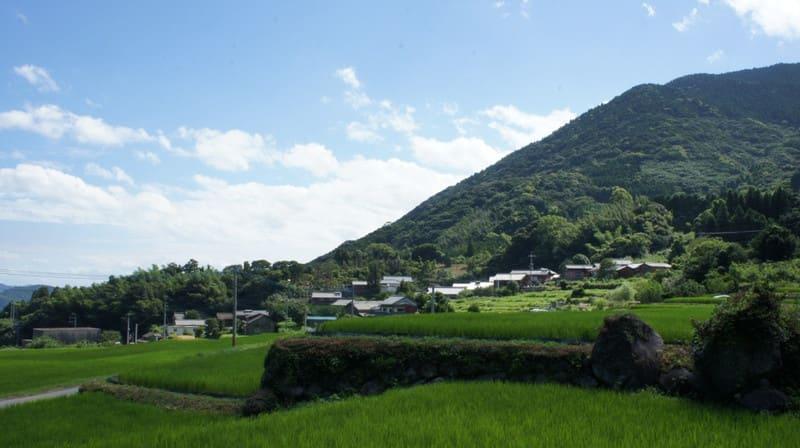 20120807_shokuiku25