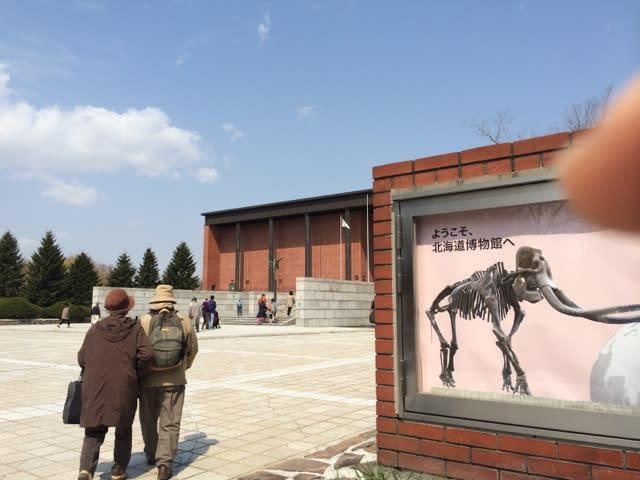 北海道博物館の自然系展示がすご...