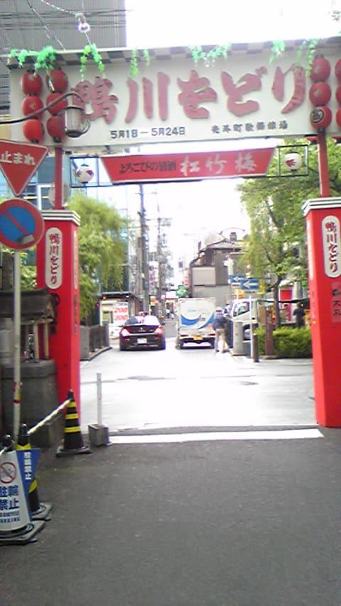 京の春のをどり全制覇!