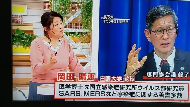 白鴎 大学 の 岡田 晴恵 教授