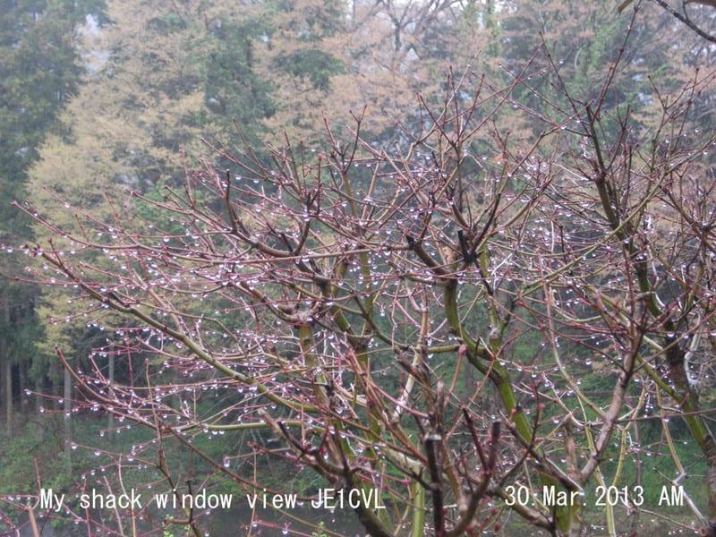 Window30mar2013