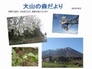 大山の森だより(春号)