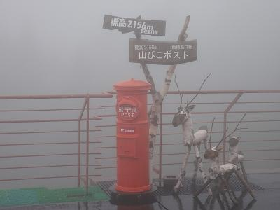 20117002