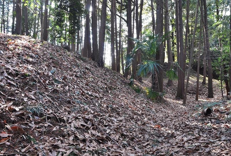 市尾宮塚古墳前方部から見た墳丘