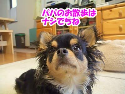 https://blogimg.goo.ne.jp/user_image/20/65/a96bd49f69be2120f9e70695af375ae2.jpg
