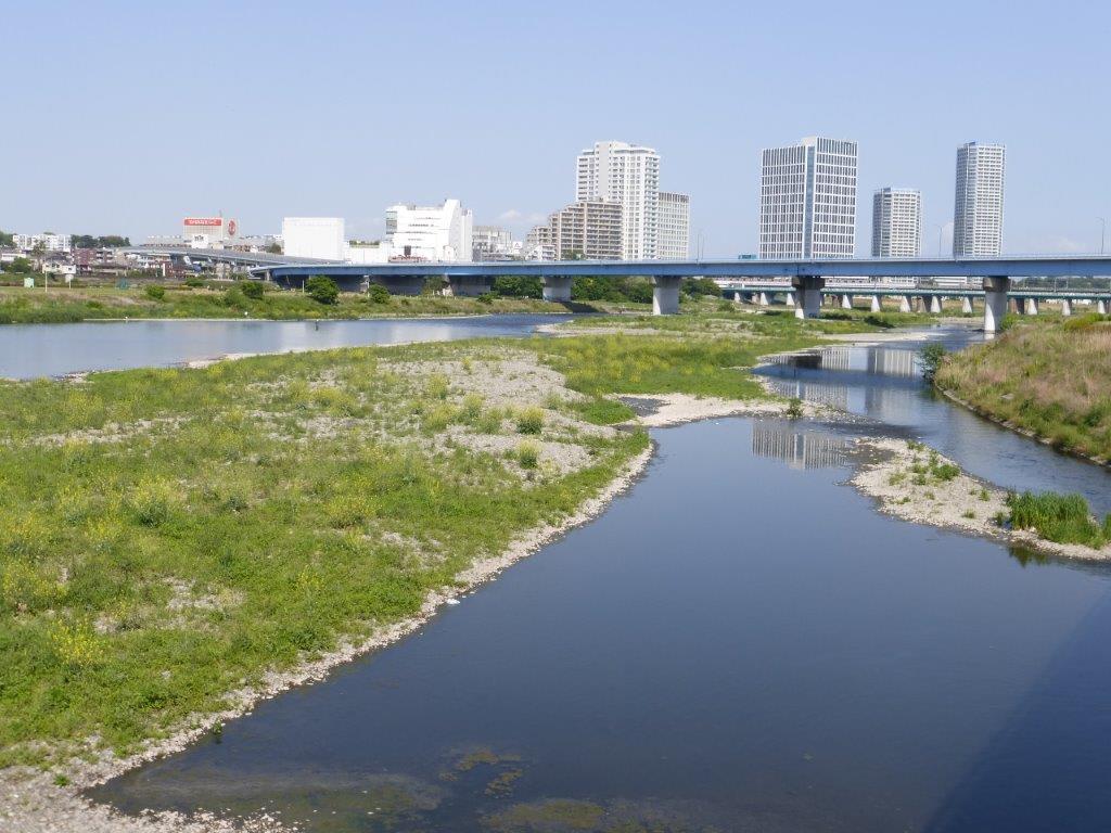 反対 二子 玉川 堤防