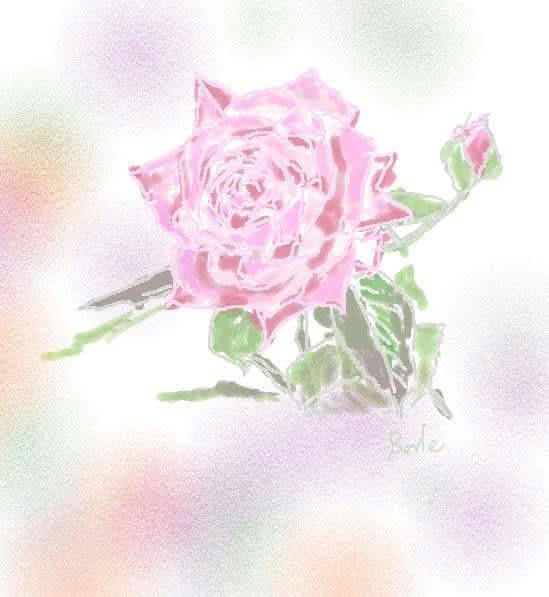 バラのイラスト ピンク
