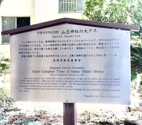 雅治 歌詞 福山 クスノキ