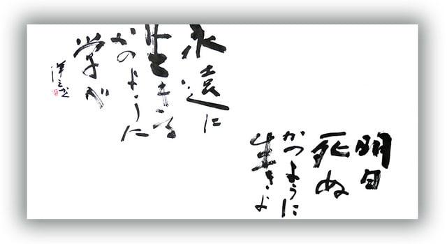 明日 死ぬ か の よう に 生きよ 永遠 に 生きる か の よう に 学べ 小平奈緒W杯14勝、無敵の裏にあるガンジーの言葉