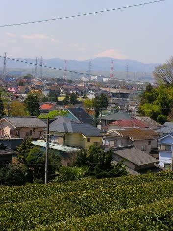 加治丘陵 鎌倉古道
