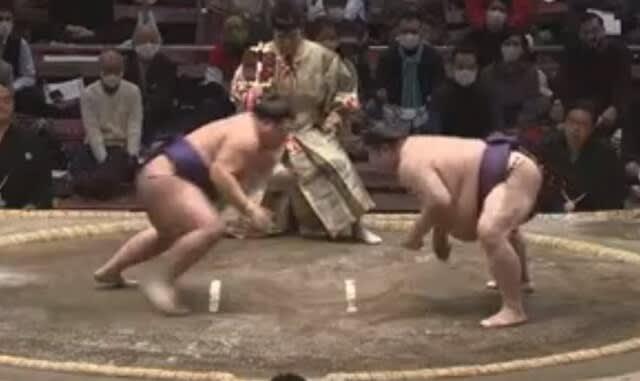 場所 動画 秋 大相撲