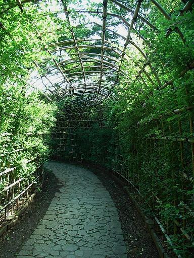 20089tonogayatopark005