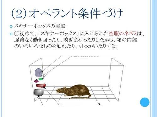 ◇保存に注意!◇(1)古典的条件...