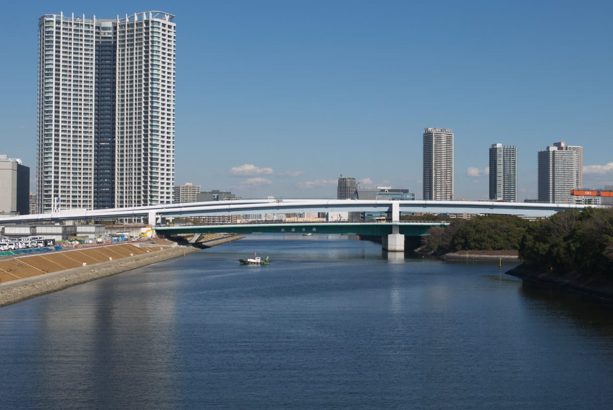 厳冬の豊洲新市場:環2有明北橋...