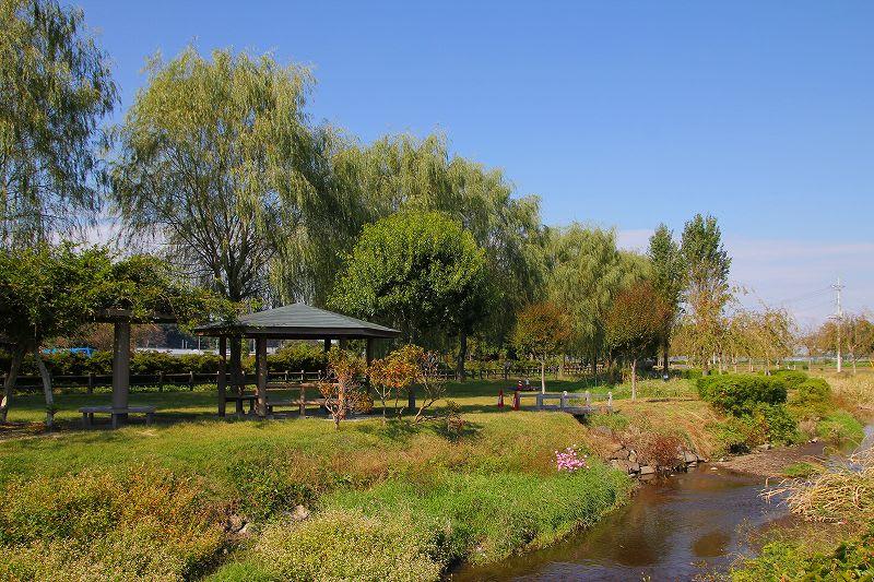 「上三川町」のブログ記事一覧-栃木の木々