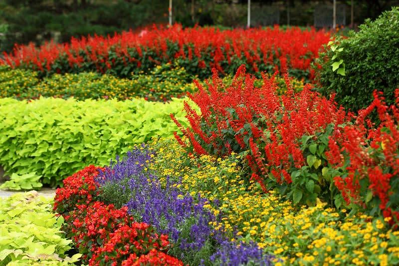 ・金沢から発信のブログ 風景と花