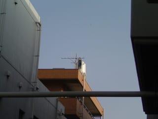 マンション屋上の給水タンクに、何かが引っ掛かってる??