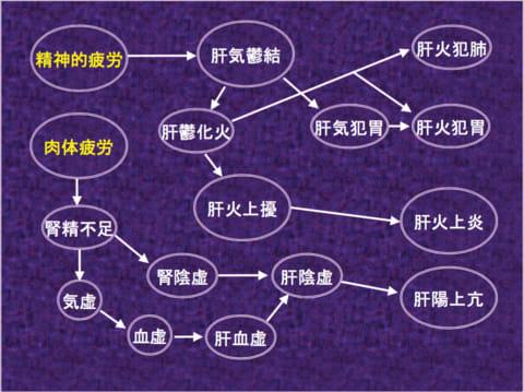 曲直瀬道三の察証弁治と中国医法の受容