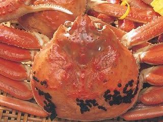 カニビルの卵」が美味しい証 - 観光プロデューサーのひとこと