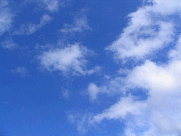 Blue Skies」 と「カリフォルニ...