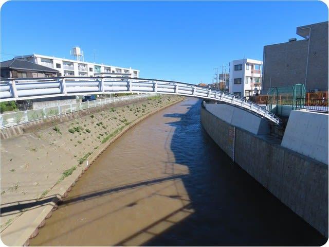 台風 被害 江ノ島