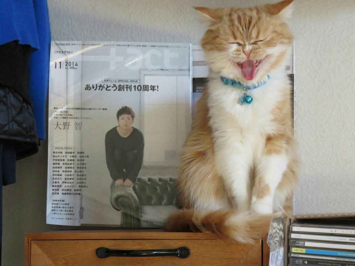 さとし 大野 智 さん ブログ