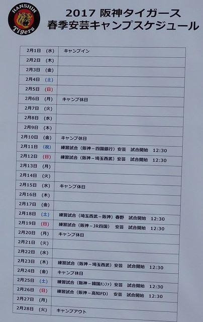 阪神 キャンプ 日程