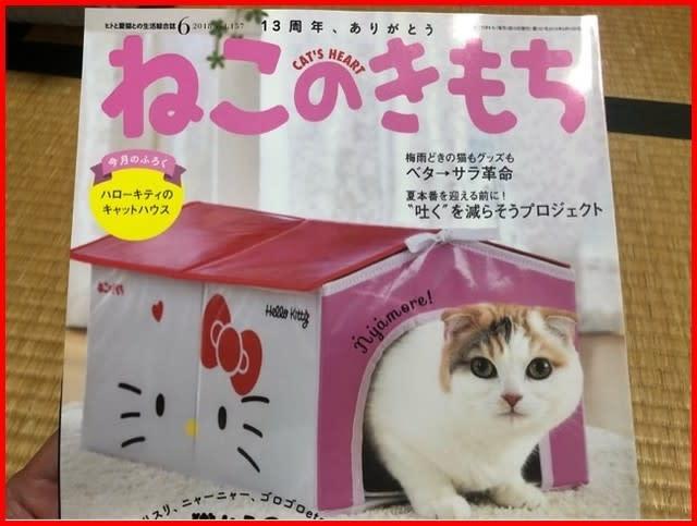 キティ ちゃん ハウス
