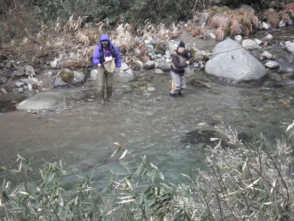 郡上長良の亀尾島川