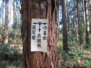 https://blogimg.goo.ne.jp/user_image/24/c8/21a2db02e1886d4d86248791d79ed04a.jpg