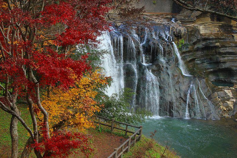 那須烏山市 龍門の滝 23.11.30 - 栃木の木々