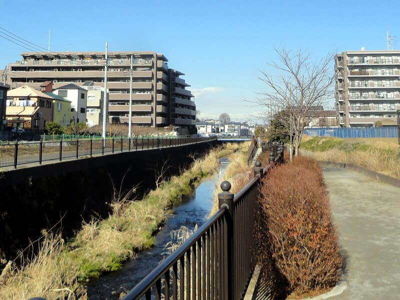 01月11日 越戸川