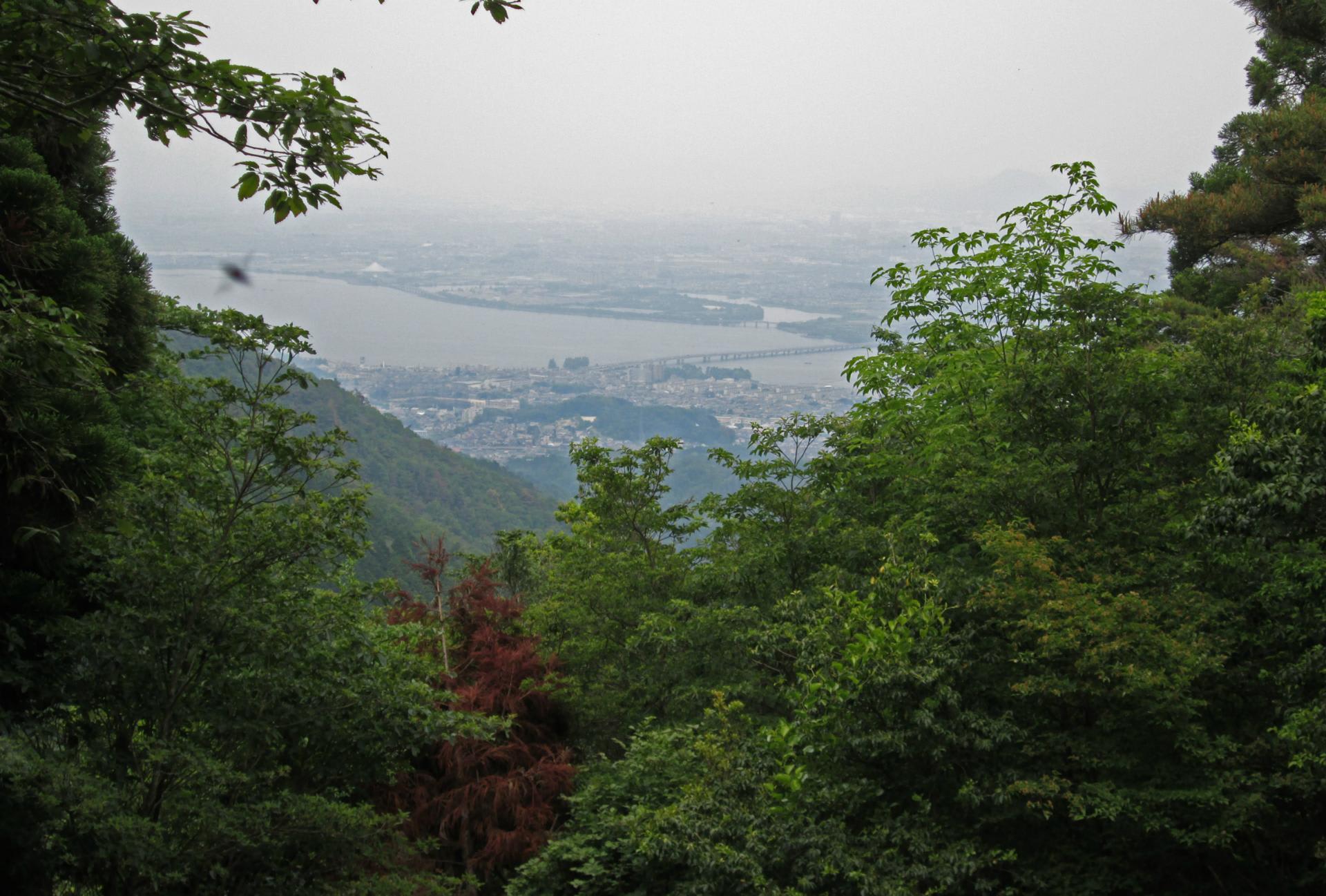 京阪大谷駅から音羽山を経て醍醐...
