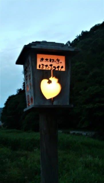 岡山 県 ホタル