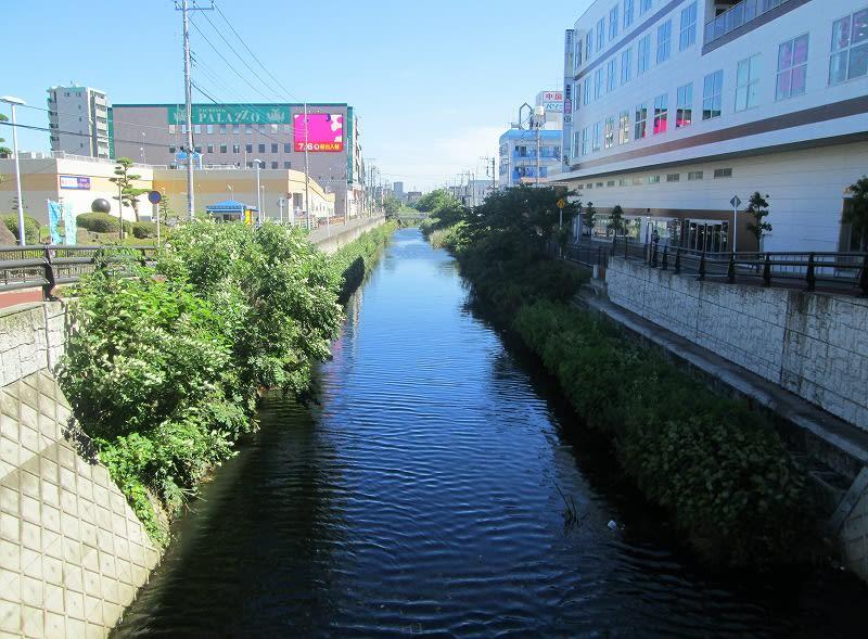 新坂川歩き。。 - ていいち日記