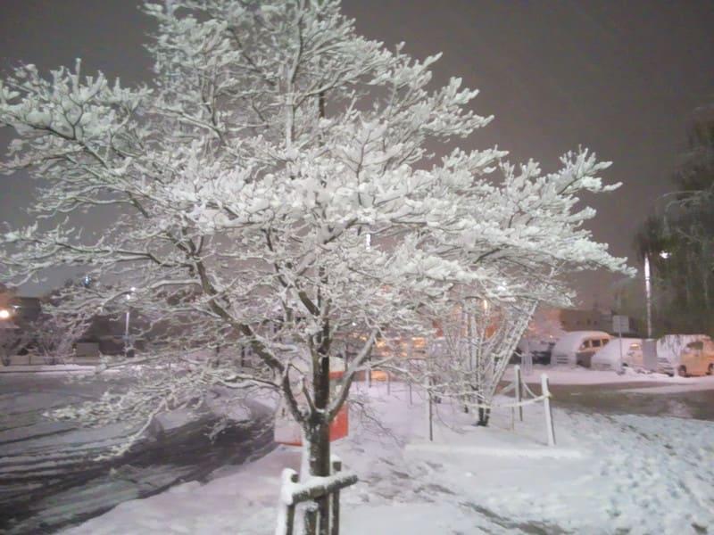 山形は今日も雪だった!