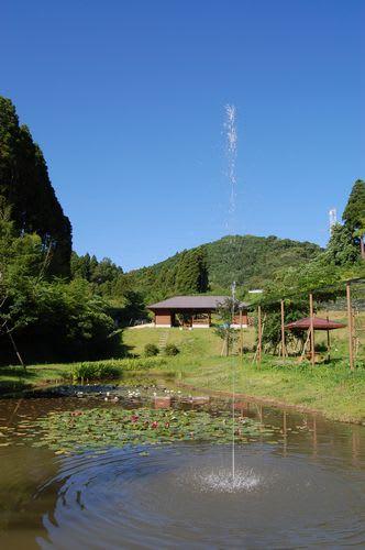 スイレン池の噴水