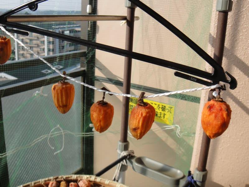 大和百目柿