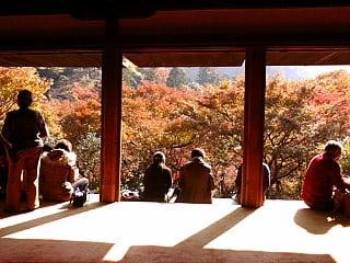 京都の高山寺に来ています。