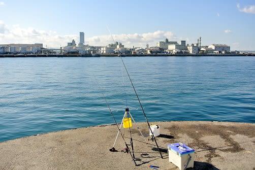 釣り コンビナート 泉佐野 食品