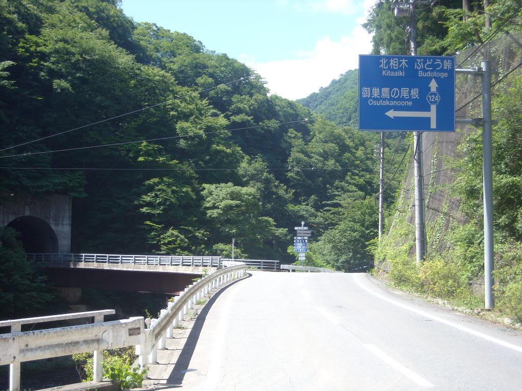ぶどう峠(県道124号上野小海線)...