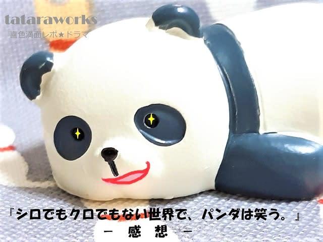 でも は パンダ で 黒 笑う つまらない 白 ない でも 世界