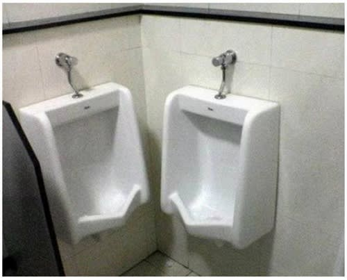 猫 トイレ 命令