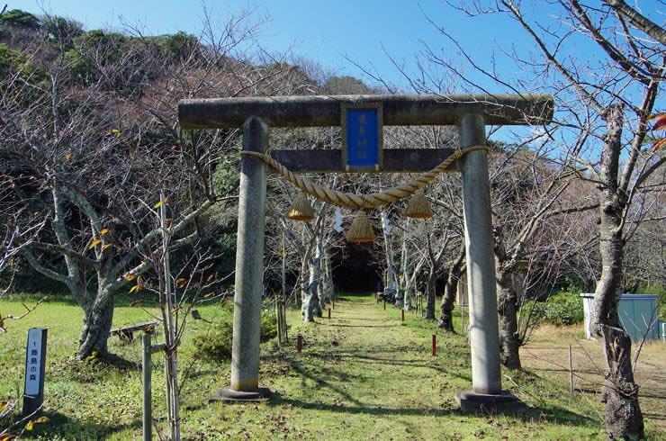 鹿島神社参道
