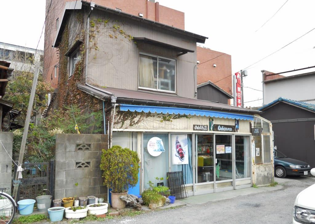 神奈川県・静岡県」のブログ記事...