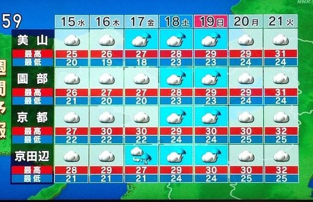 予報 週間 京都 の 天気
