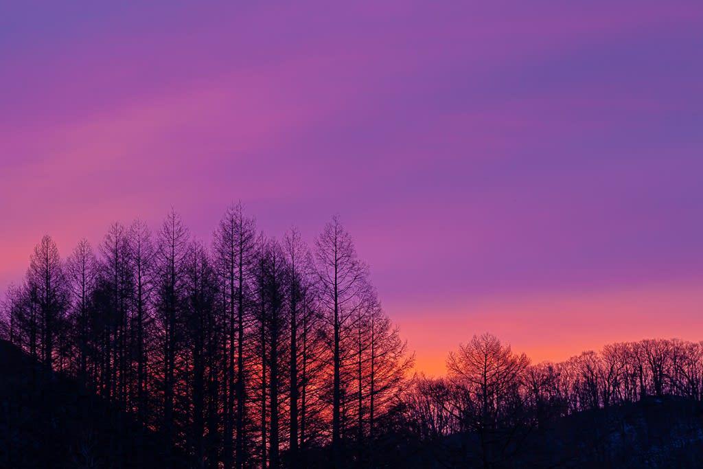 夜と朝の間の写真